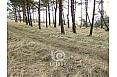 sklypas-ant-juros-kranto-2