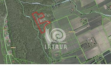 Parduodama sodybvietė Batniavos kaime, Kauno raj.